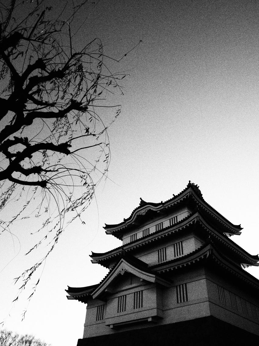 2010_12_oshi